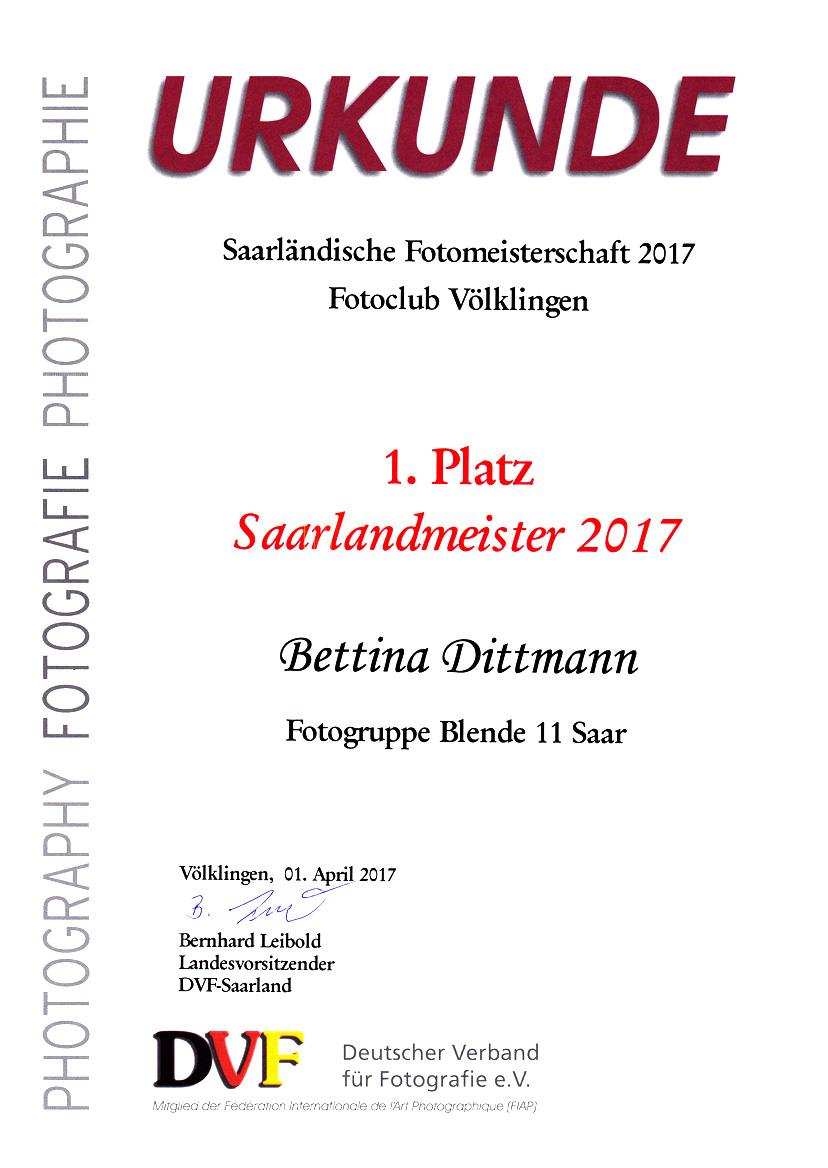 saarlandmeister_2017_klein