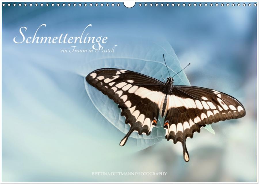 Kalender Schmetterlinge – ein Traum in Pastell