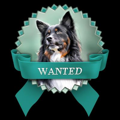 wanted_hundemodel